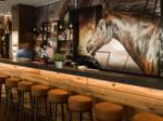 niu Saddle Fürth Öffentliche Bereiche Bar